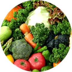 Oxidative Stress And Antioxidant Defense